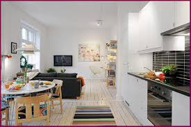 Home Decor Apartment Ideas Cool Decorating Ideas
