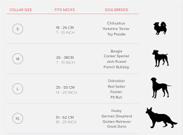 Small Dog Collar Size Chart Dog Collar Sizes By Breed Goldenacresdogs Com