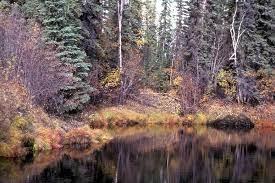 beautiful landscape wallpaper.jpg ...