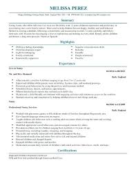 best nanny resumes best nanny resume good what does a look like mmventures co