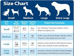 Dog Haircut Chart Services And Prices