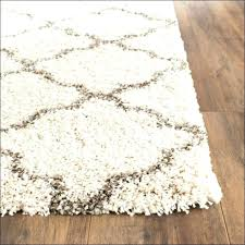 tuesday morning area rugs morning rugs medium size of area rug home goods outdoor morning