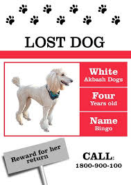 Lost Pet Flyer Maker Amazing Missing Dog Flyer Template Photos Resume Ideas namanasa 68