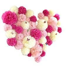 Tissue Paper Flower Decor Amazon Com Bringsine 5 Pack Crafts Pom Poms Tissue Paper Flowers