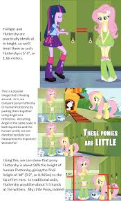 Pony Height Chart My Little Pony Twilight Sparkle Luna Math Spike Fluttershy