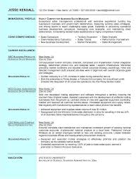 Example Of A Business Resume Mesmerizing Example Business Sales Resume Free Sample [L] Resume Invoice