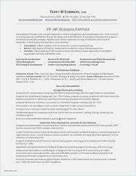 Download 60 Software Developer Resume Template New Professional