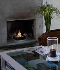 wood burning stoves vs ethanol fireplaces