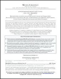 Award Winning Resume Format Sample Resumes Examples – Hadenough