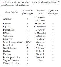 Biochemical And Molecular Characterization Of Bacillus