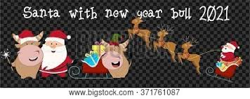 The lunar new year selection includes 39 unique items for men, women and children. Cute Ox Cow Bull Vector Photo Free Trial Bigstock