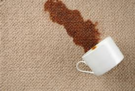 Dunwell Carpet Cleaning Carpet Cleaning & Protection Launcestion
