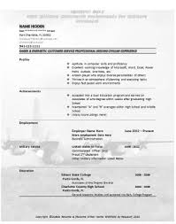 curriculum vitae air force curriculum vitae template - Air Force Resume  Examples