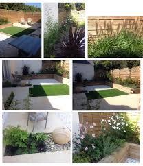Small Picture peonies in clares garden in new jersey perennial garden design