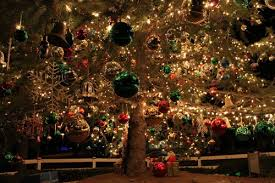 outdoor tree lighting ideas. Outdoor Tree Lights. Christmas Ornaments. Presents. Holiday Lighting Ideas. Ideas I