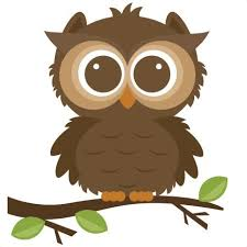 Image result for owls cartoon