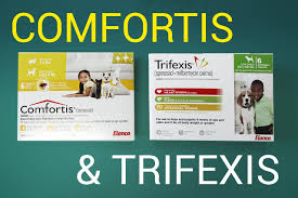 where to buy trifexis cheap. Beautiful Trifexis And Where To Buy Trifexis Cheap A