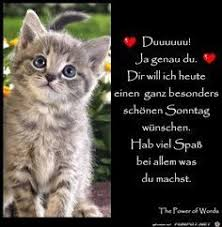 Pin Von C Graham Auf Cute Baby Animals Schönen Sonntag Sprüche