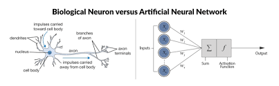 Deep Neural Network Deep Learning The Future Or Another Ai Buzzword Sergios