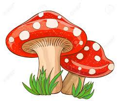 Dessin animé champignons rouges et de l'herbe sur blanc. illustration  vectorielle   Champignon dessin, Champignons farcis, Illustration  vectorielle