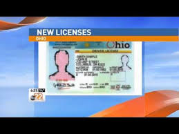Look License Of Youtube Driver's Ohio - Changing Up