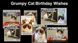 grumpy cat birthday bird. Brilliant Cat In Grumpy Cat Birthday Bird B