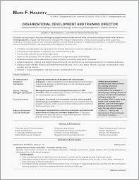 Resume Job Fascinating Resume Job Description Examples Resume Format Examples 48