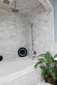 carrara marble subway tile bathroom traditional with house plants marble bathroom marble tiles marble