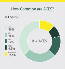 Aces Charting System Adverse Childhood Experiences Presentation Graphics