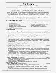 Bank Account Manager Resume Examples Beautiful Manager Resume
