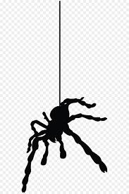 Tarantula Web Design Spider Web Png Download 600 1352 Free Transparent Spider