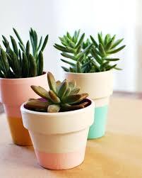 indoor planter creative ideas flower stands uk modern planters . indoor  planter ...