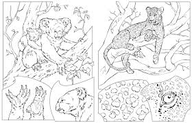 Small Picture National Geographic Free Coloring Pages on Art Coloring Pages