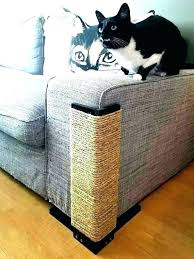 leather couch repair cat scratches repair scratches in leather couch repair cat scratches on leather repairing