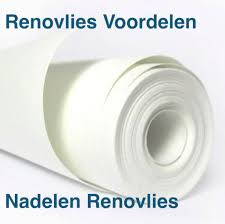Renovlies Blog