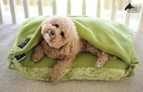 Burrow Dog Bed korrectkritters