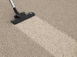 carpet hoover. vacuuming carpet twin cities hoover