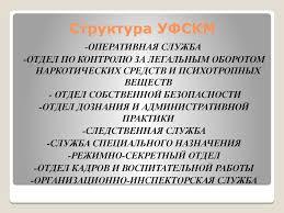 Отчет по практике Федеральная служба РФ по контролю за оборотом   Структура УФСКМ