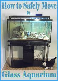 how to move an empty gl aquarium