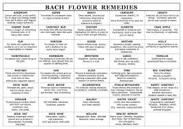 Bach Flower Remedies Chart I Love Using Bach Flower Remedies With My Clients It Helps