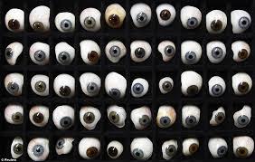 Hasil gambar untuk bola mata palsu