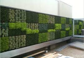 compound living wall