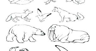 Coloring Pages Free Coloring Pages For Toddlers Kindergarten