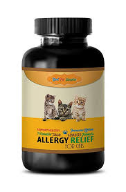 Amazon.com : BEST PET SUPPLIES LLC cat Skin and Itch Relief Treats ...