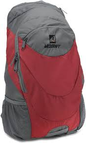 Wildcraft Daypack A4 20 L Backpack Red Price in India Flipkart