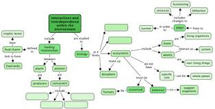 Components Of Ecosystem Flow Chart Energy Flow Food Chains And Food Webs Interactions And