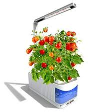 hydroponic herb garden. Perfect Herb Indoor Hydroponic Herb Garden Kit Light  Smart Fresh  Hydroponics LED Growing System For To N