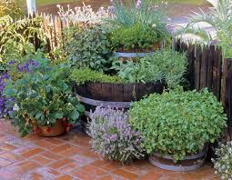 Small Picture 35 Herb Container Gardens Pots Planters Saturday Inspiration