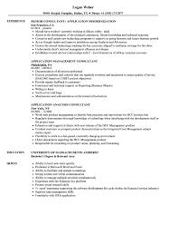 Consultant Application Resume Samples Velvet Jobs