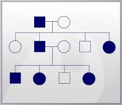 Inheritance Patterns Adorable Genetics Basics Lesson 48 Modes Of Inheritance